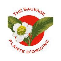 label-Théiers-anciens-et-sauvages